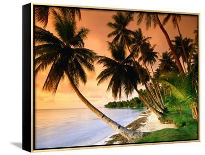 Blue Lagoon Resort Beach, Weno Centre, Micronesia-John Elk III-Framed Canvas Print