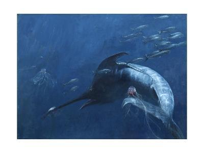 Blue Marlin, Bunker, and Jellies, 2003-Stanley Meltzoff-Giclee Print