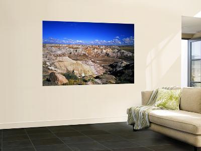 Blue Mesa Overlook, Petrified Forest National Park, Arizona, USA-Bernard Friel-Wall Mural