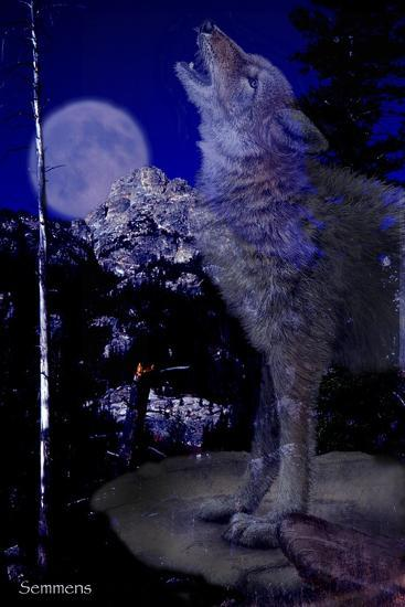 Blue Moon-Gordon Semmens-Giclee Print
