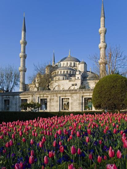 Blue Mosque, also known as the Sultanahmet Mosque, Gives its Name to the Surrounding Area-Julian Love-Photographic Print