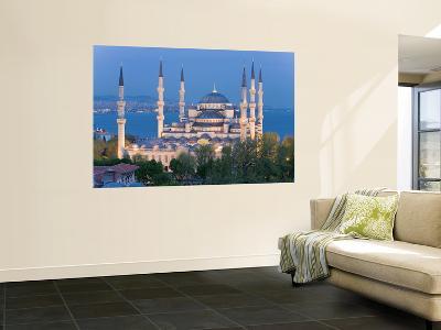 Blue Mosque, Sultanahmet, Bosphorus, Istanbul, Turkey-Gavin Hellier-Wall Mural