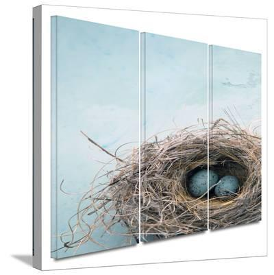 Blue Nest 3 piece gallery-wrapped canvas-Elena Ray-Gallery Wrapped Canvas Set
