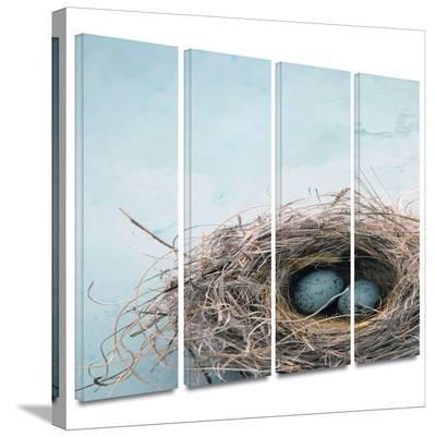 Blue Nest 4 piece gallery-wrapped canvas-Elena Ray-Gallery Wrapped Canvas Set