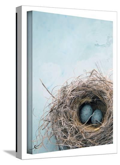 Blue Nest Gallery-Wrapped Canvas-Elena Ray-Gallery Wrapped Canvas