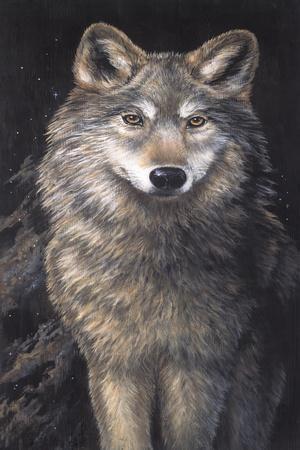 https://imgc.artprintimages.com/img/print/blue-owl-wolf_u-l-pn9fdl0.jpg?p=0