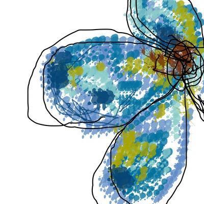 https://imgc.artprintimages.com/img/print/blue-petals_u-l-q1avdoa0.jpg?p=0
