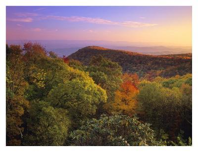 Blue Ridge Mountains with deciduous forests in autumn, North Carolina-Tim Fitzharris-Art Print