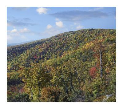 Blue Ridge Range from Moormans River Overlook, Shenandoah National Park, Virginia-Tim Fitzharris-Art Print