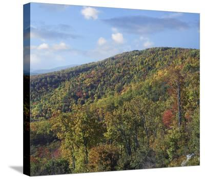 Blue Ridge Range from Moormans River Overlook, Shenandoah National Park, Virginia-Tim Fitzharris-Stretched Canvas Print
