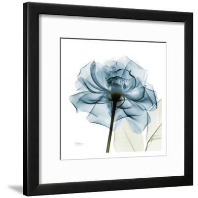 Blue Rose-Albert Koetsier-Framed Art Print