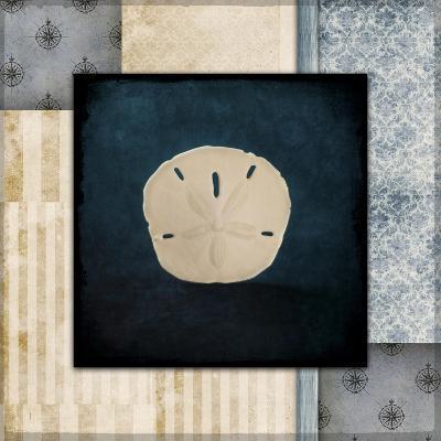 Blue Sea Sand Dollar-LightBoxJournal-Giclee Print
