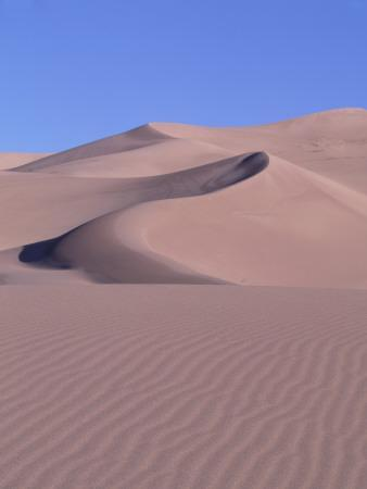 Blue Sky and Sand Dunes with Ripples and Crescent Crests-Jeff Foott-Photographic Print