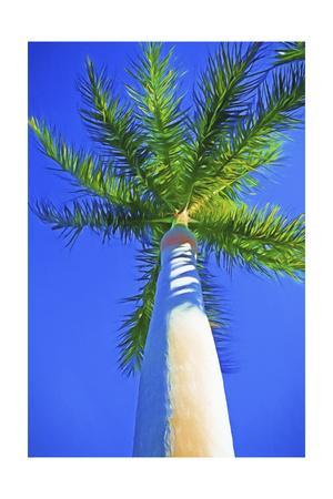 https://imgc.artprintimages.com/img/print/blue-sky-palm-ii_u-l-q1bl8se0.jpg?p=0
