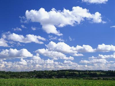 Blue Sky with Puffy White Clouds over Farmland in Lincolnshire, England, United Kingdom, Europe--Photographic Print