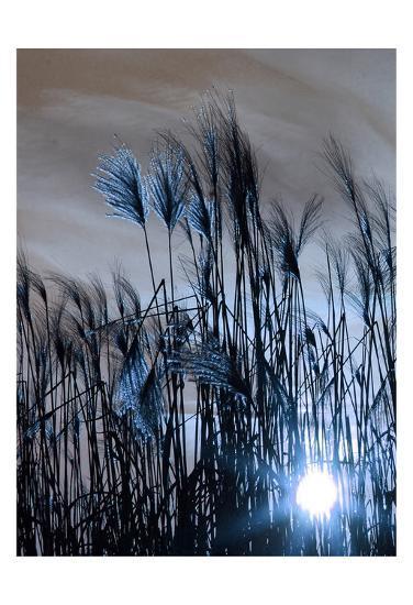 Blue Sunset 1-Sheldon Lewis-Art Print