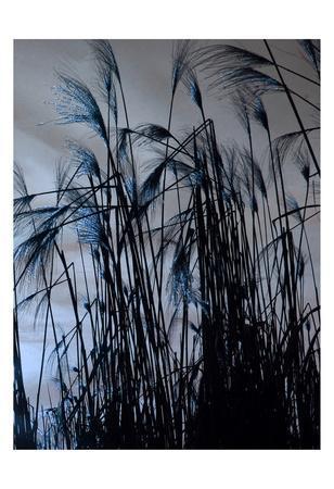 https://imgc.artprintimages.com/img/print/blue-sunset-2_u-l-f93t130.jpg?p=0