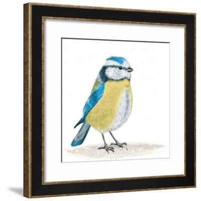 Blue Tit on the Ground-Milovelen-Framed Premium Giclee Print