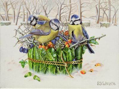 Blue Tits in Leaf Nest, 1996-E.B. Watts-Giclee Print