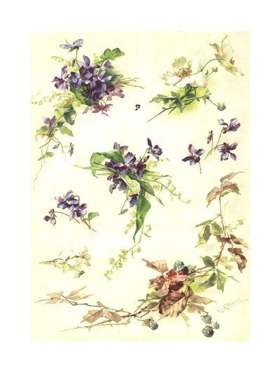 Blue Violets and Blackberry Branches--Art Print