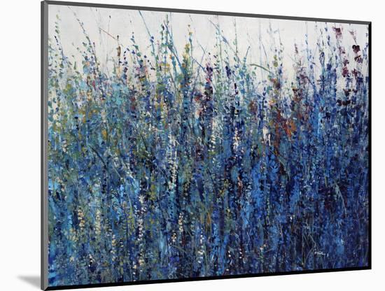 Blue Vision-Tim O'toole-Mounted Giclee Print
