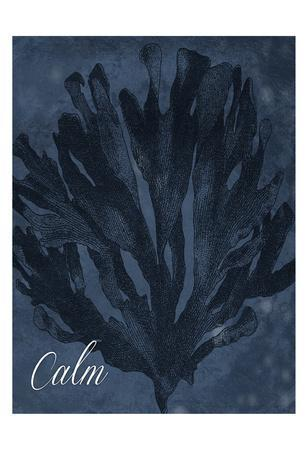 https://imgc.artprintimages.com/img/print/blue-water-coral-calm_u-l-f90a6e0.jpg?p=0