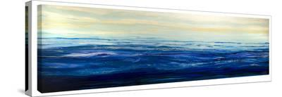 Blue Waters-Barbara Biolotta-Stretched Canvas Print