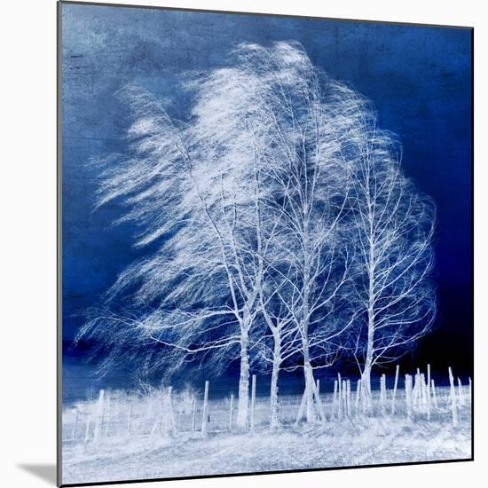 Blue Wind-Philippe Sainte-Laudy-Mounted Premium Photographic Print