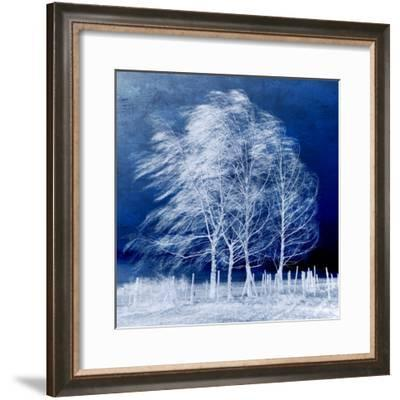 Blue Wind-Philippe Sainte-Laudy-Framed Photographic Print
