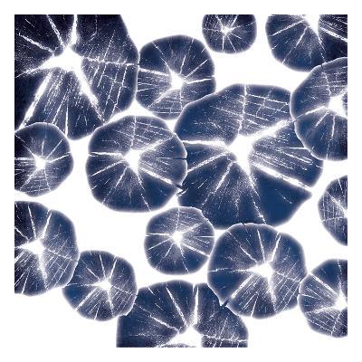 Blue Wood Pile-Jace Grey-Art Print