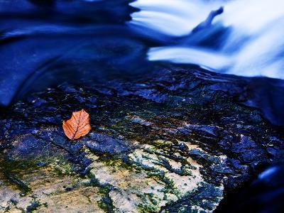 Blue-Doug Chinnery-Photographic Print