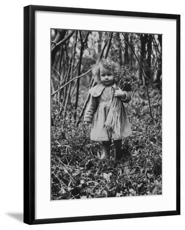 Bluebells--Framed Photographic Print