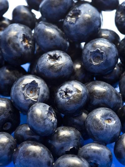 Blueberries-Jon Stokes-Photographic Print