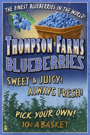 https://imgc.artprintimages.com/img/print/blueberry-farm-vintage-sign_u-l-q1gq85v0.jpg?p=0