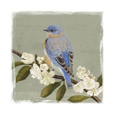 Bluebird Branch II-Victoria Borges-Art Print