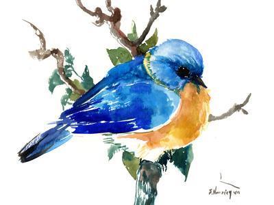 https://imgc.artprintimages.com/img/print/bluebird_u-l-f98tsv0.jpg?p=0