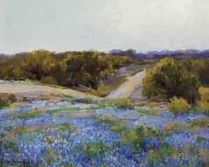 Bluebonnets at Late Afternoon