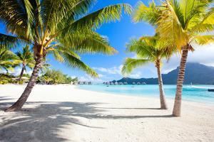 Beautiful Beach with a View of Otemanu Mountain on Bora Bora Island by BlueOrange Studio