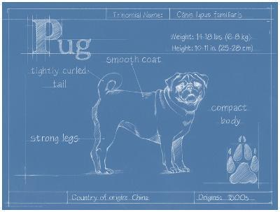 Blueprint Pug-Ethan Harper-Art Print