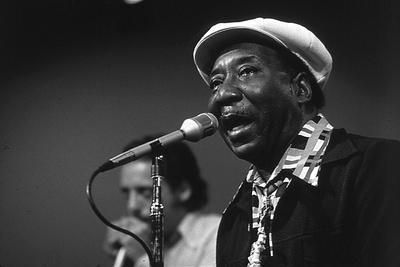 https://imgc.artprintimages.com/img/print/bluesman-muddy-waters-1915-1983-on-stage-in-1982_u-l-pwgjpj0.jpg?p=0