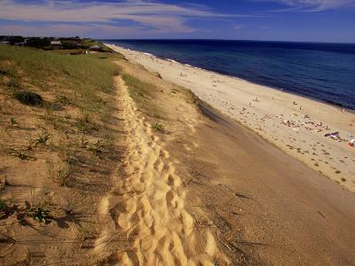 Bluff Above Maguire Landing, Cape Cod, MA-Jeff Greenberg-Photographic Print
