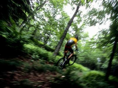 Blurred Action of Recreational Mountain Biker Riding on the Trails--Photographic Print