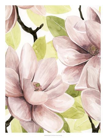 https://imgc.artprintimages.com/img/print/blush-magnolia-i_u-l-f93xld0.jpg?p=0