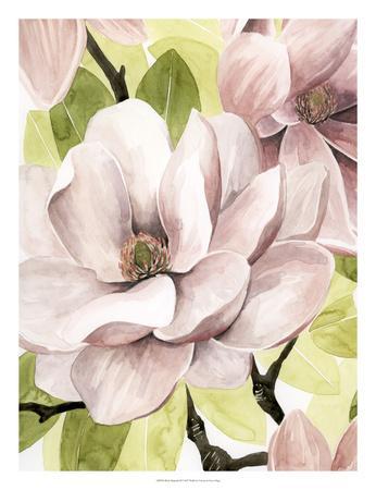 https://imgc.artprintimages.com/img/print/blush-magnolia-ii_u-l-f93xle0.jpg?p=0