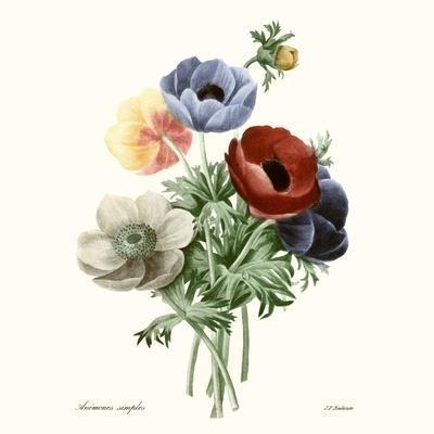 https://imgc.artprintimages.com/img/print/blushing-bouquet-i_u-l-q19bkns0.jpg?p=0