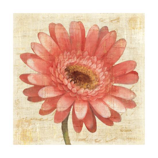 Blushing Gerbera on Cream-Albena Hristova-Art Print