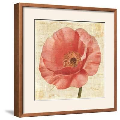 Blushing Poppy on Cream-Albena Hristova-Framed Photographic Print