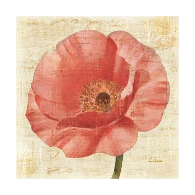 Blushing Poppy on Cream-Albena Hristova-Art Print