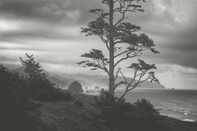 Blustery Morning View From Ecola Point, Oregon Coast-Vincent James-Photographic Print