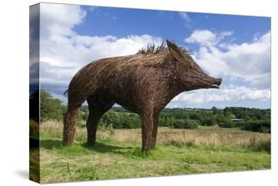 Boar/Hog Willow Sculpture Overlooking Welsh Rural Landscape
